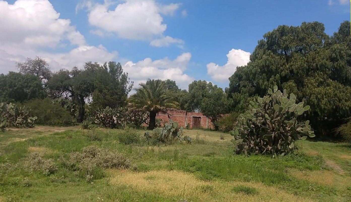 Rancho San Salvador